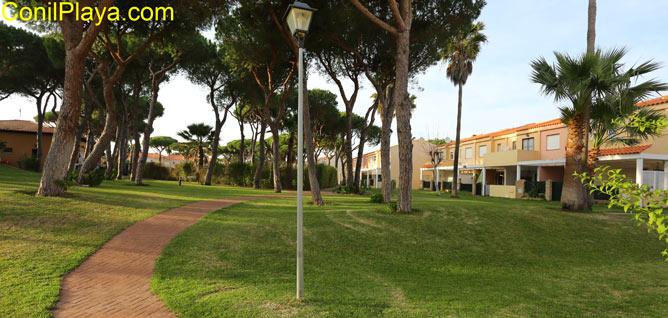 jardines de la urbanización con pinos y césped