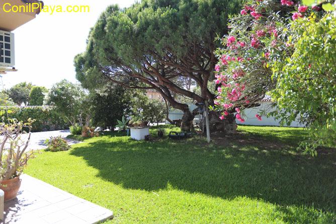 El jardín es amplio y en él hay un pino centenario que da mucha sombra.