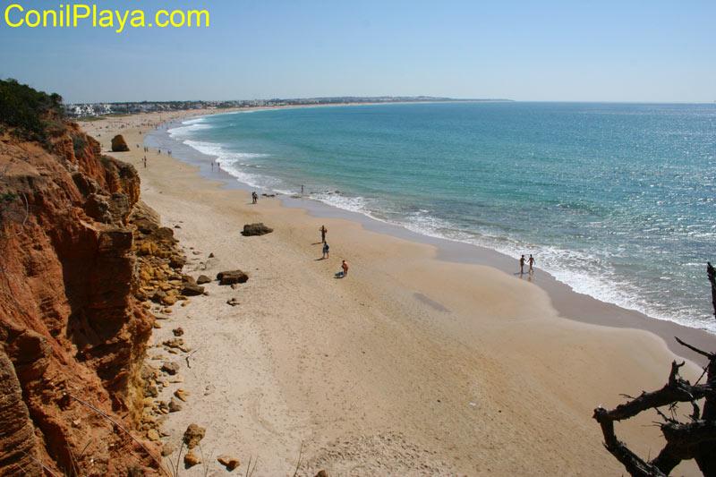 Vista general de la playa de la Barrosa.