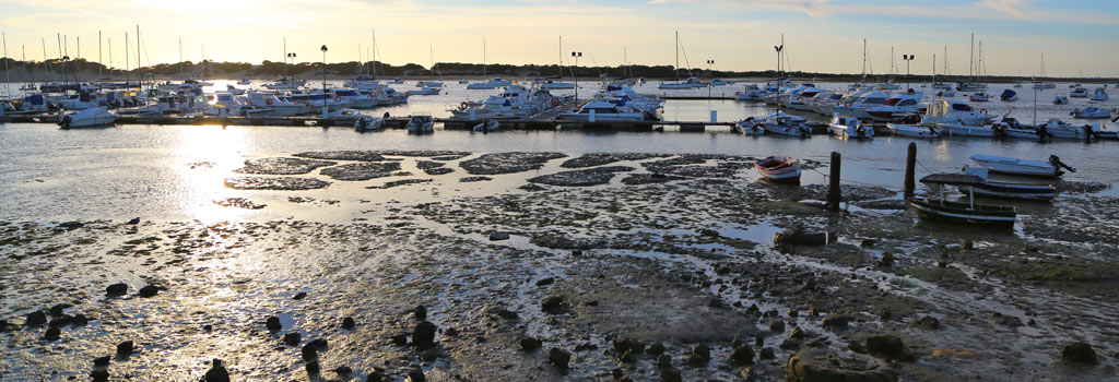 Puerto deportivo de Sancti Petri