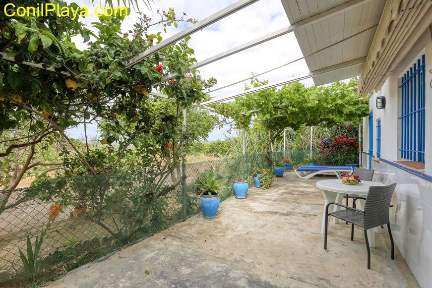 terraza cubierta y huerto