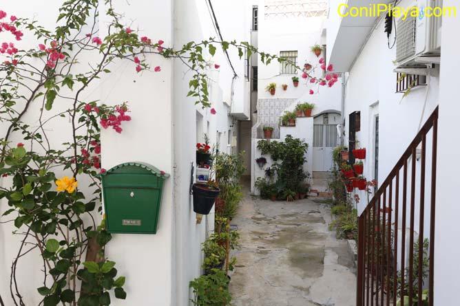 patio con macetas de flores
