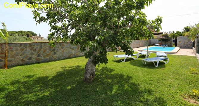 Jardin de la piscina