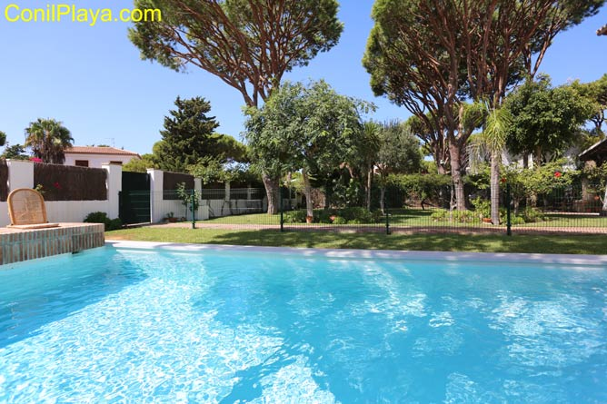 piscina y jardín del chalet