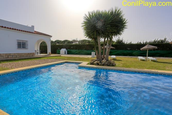 Chalet en alquiler en Conil con piscina