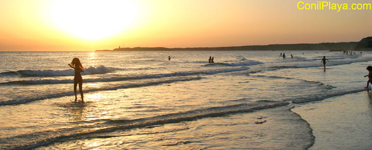 Ver las playas de Conil