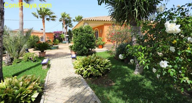 chalet en Conil con amplio jardín