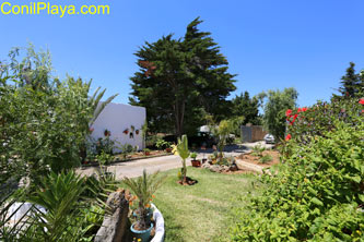el jardín visto desde la azotea