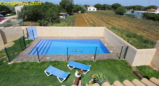 piscina vista desde la azotea