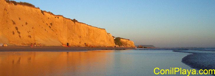 Acantilado de Conil. Playa de La Fuente del Gallo.