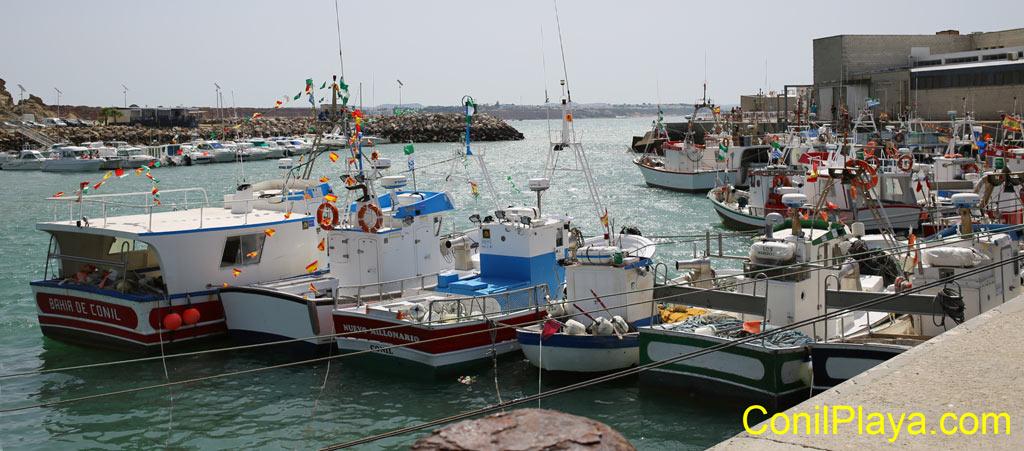 El puerto de Conil