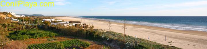 Playa de Conil