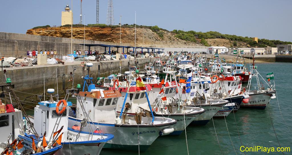 Barcos pesqueros amarrados en el puerto de Conil