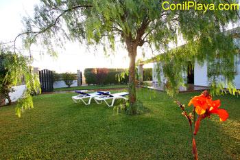 Arbol en el jardín.