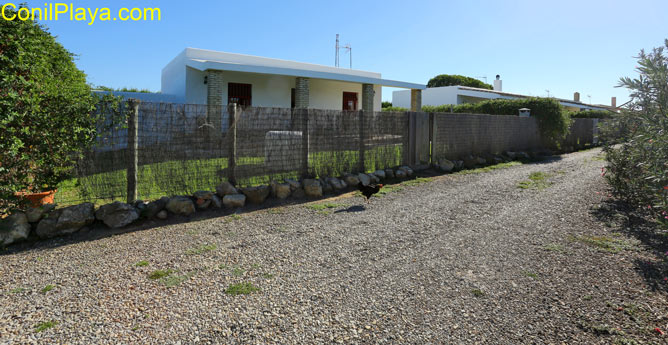 casas en El Palmar de Vejer