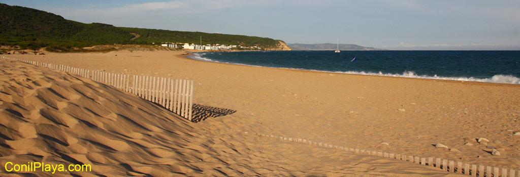 Playa del Varadero o Marisucia. Al fondo Los Caños de Meca (Barbate, Cadiz), en primer termino la duna de arena.