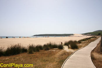 Playa de Bolonia. Al fondo la duna.