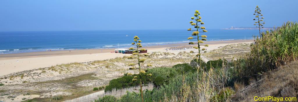 Playa de El Chorrillo.