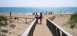 Pasarela de acceso a la playa de El Palmar de Vejer. A la altura de Torre Nueva.