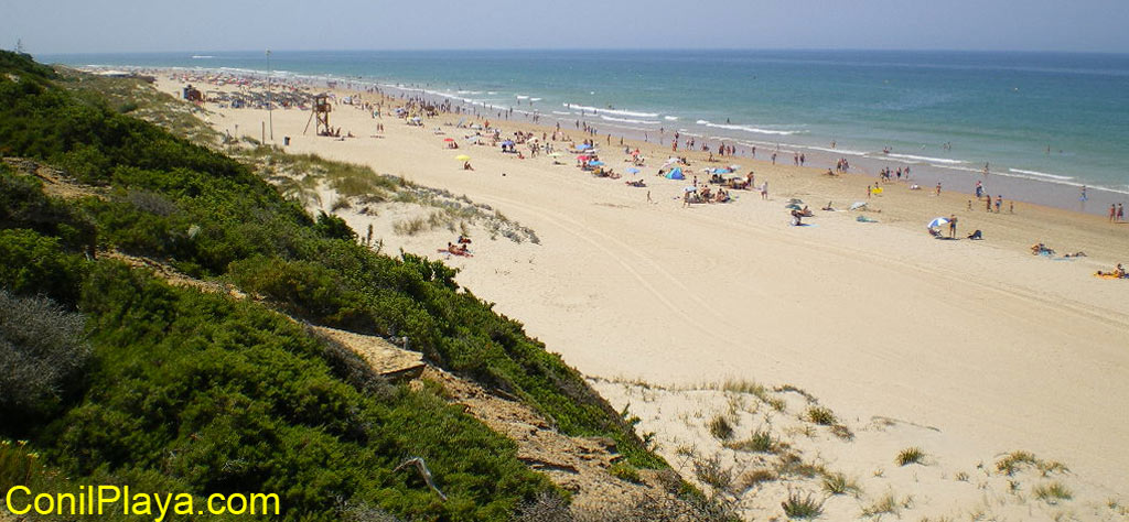 Playa de La Barrosa, en Chiclana.