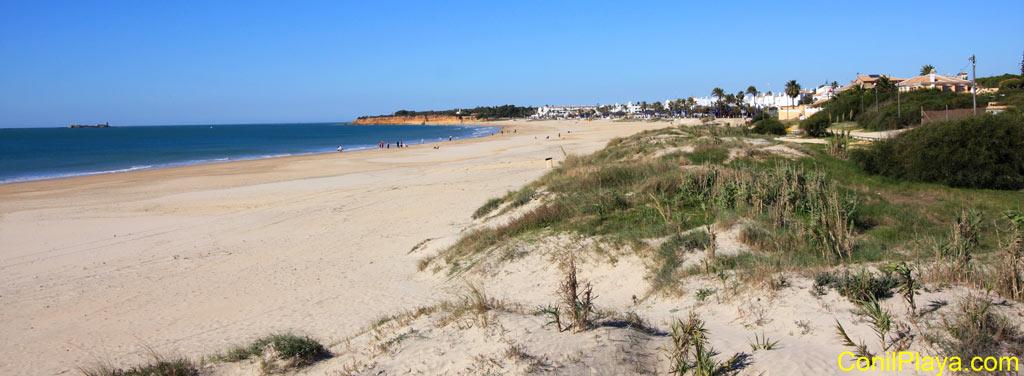 Playa de la Barrosa fotografiada desde las dunas