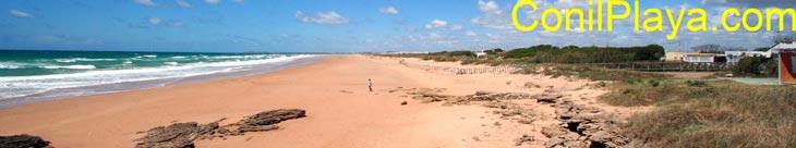 La playa de El Palmar vista desde Torre Nueva.