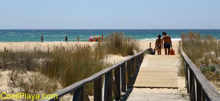 Pasarela de acceso a la playa del Palmar.