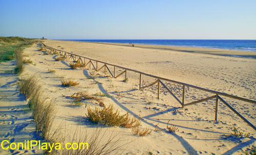 Zona sur de la playa de El Palmar.