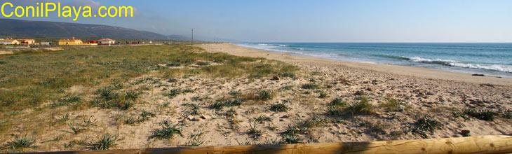 playa barbate2