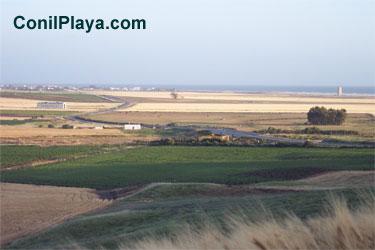 El prado de El Palmar visto desde Conil.