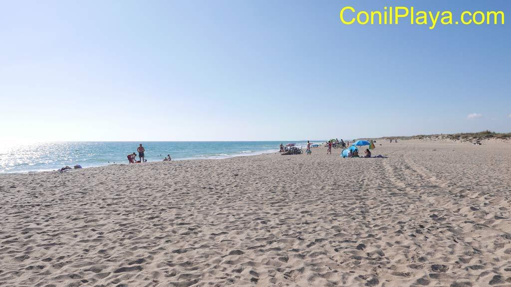 Playa de la Mangueta.